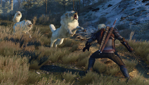 Why The Witcher 3 May Have 'Ruined' Gaming For Me